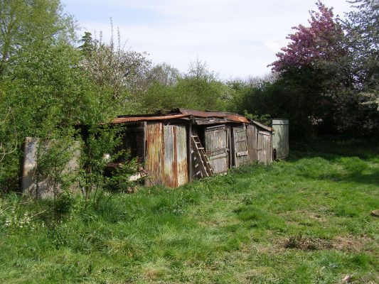 More of the sheds, a row nestling in the rough grass and undergrowth around the cottage, before the site was cleared.   Neil Fortey
